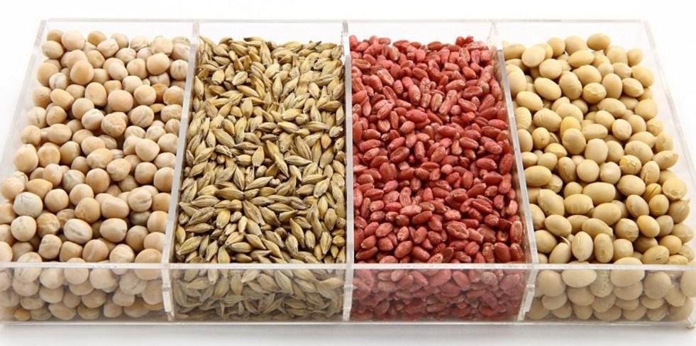 Аналіз зерна - Західний Буг